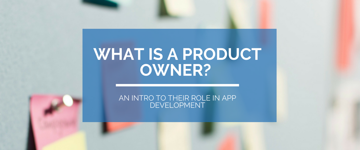 What is a Product Owner
